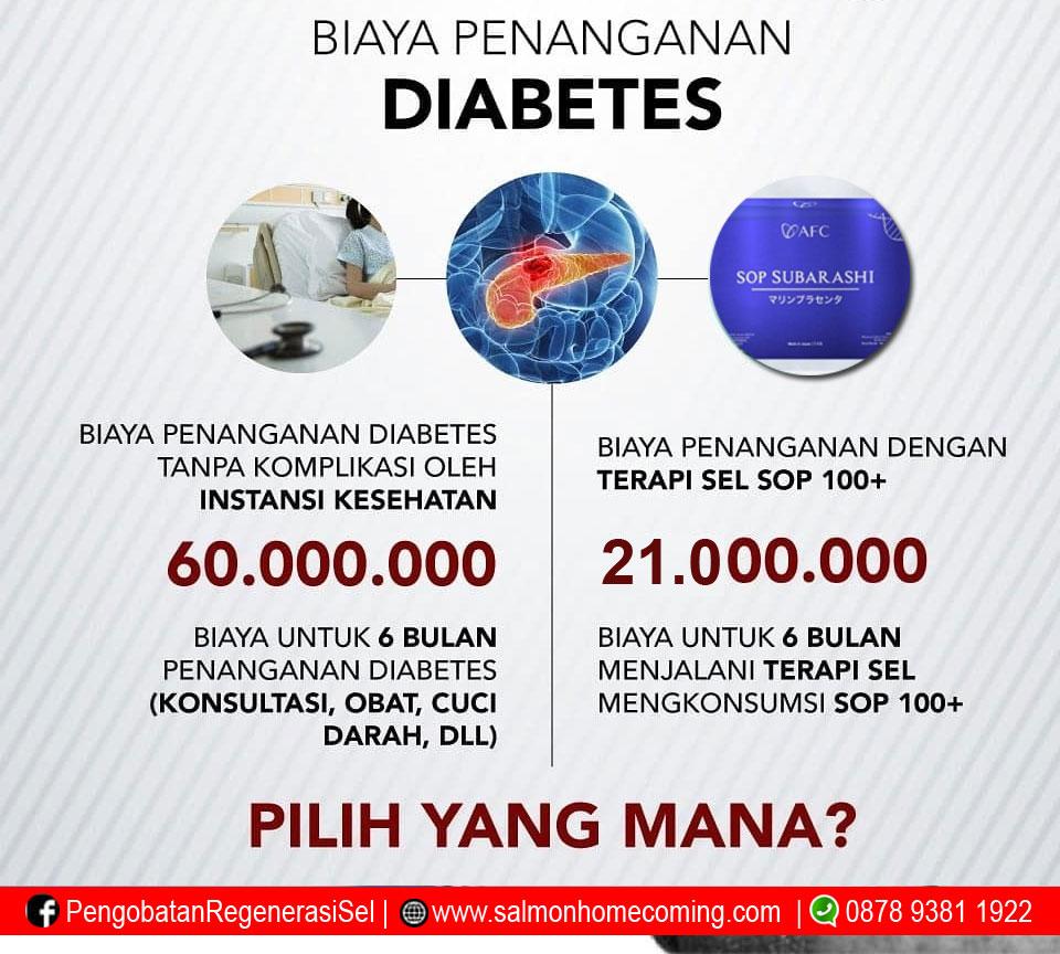 Harga SOP Subarashi untuk Diabetes