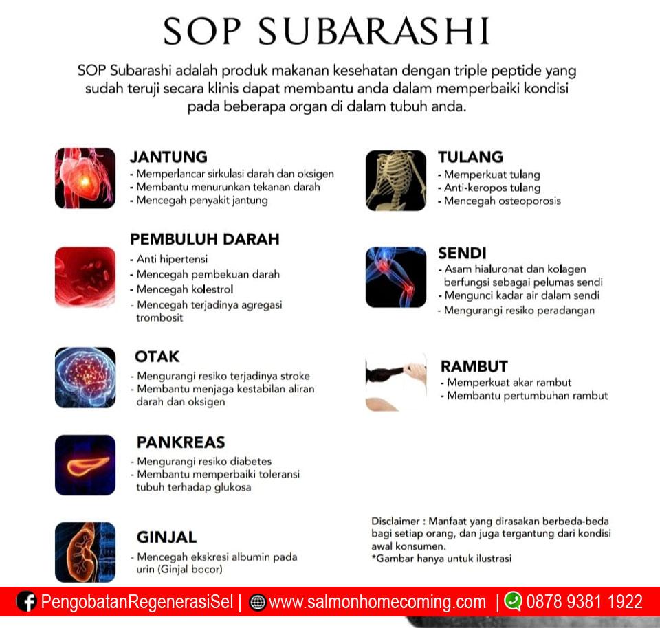 Manfaat sop Subarashi