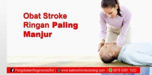obat stroke ringan paling manjur sop subarashi