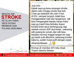 stroke ringan apa bisa sembuh
