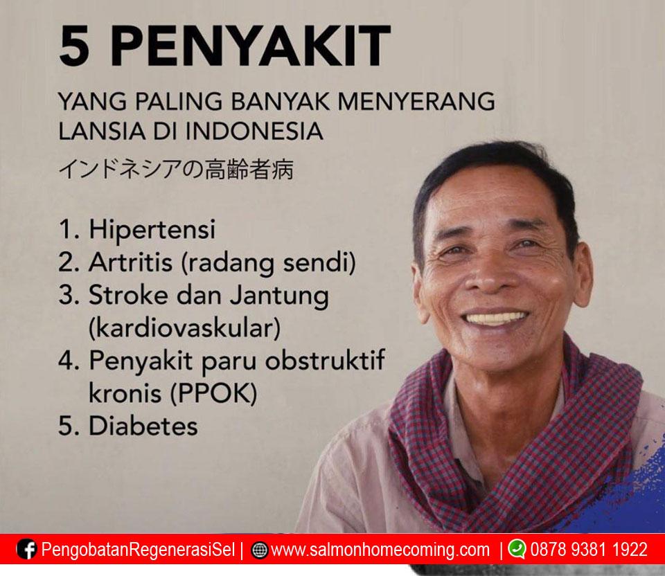 obat herbal hipertensi utsukushii