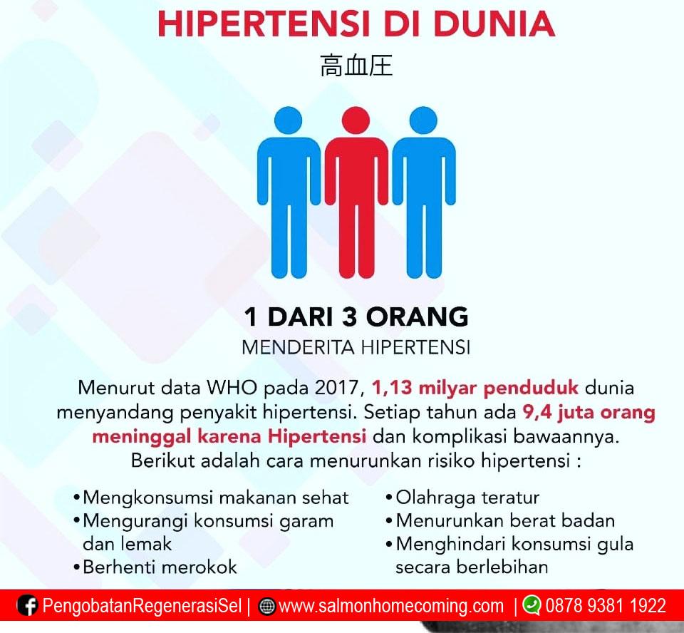 penderita hipertensi obatnya utsukushhii