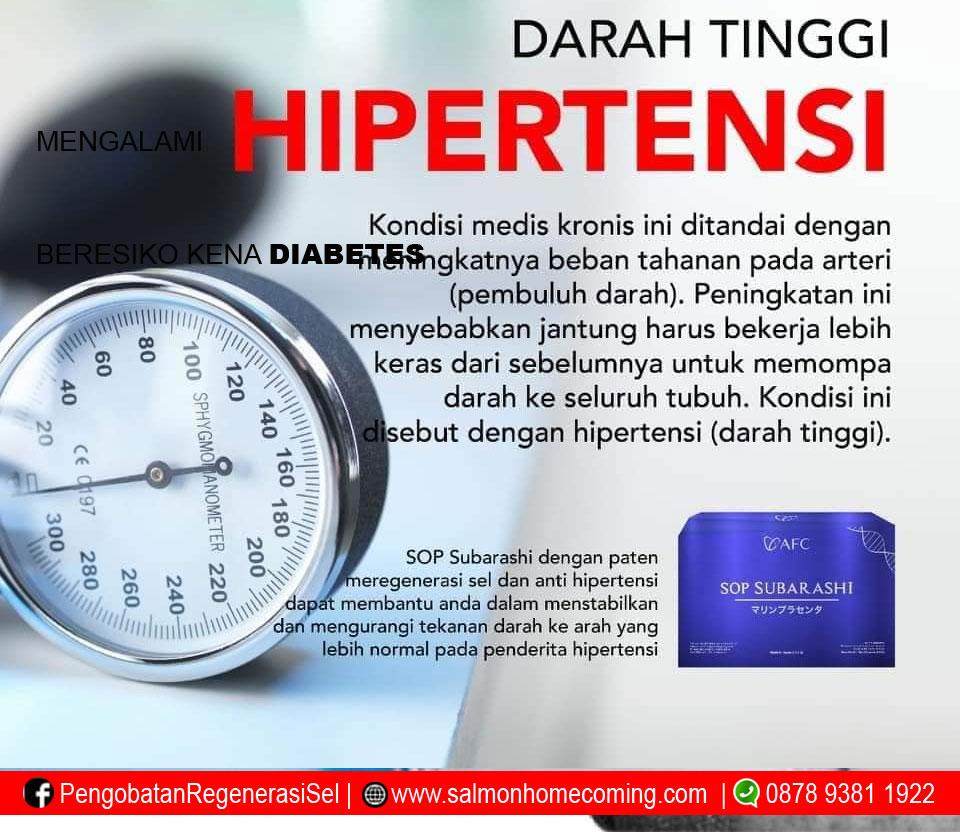 pengobatan hipertensi dengan utsukushhii
