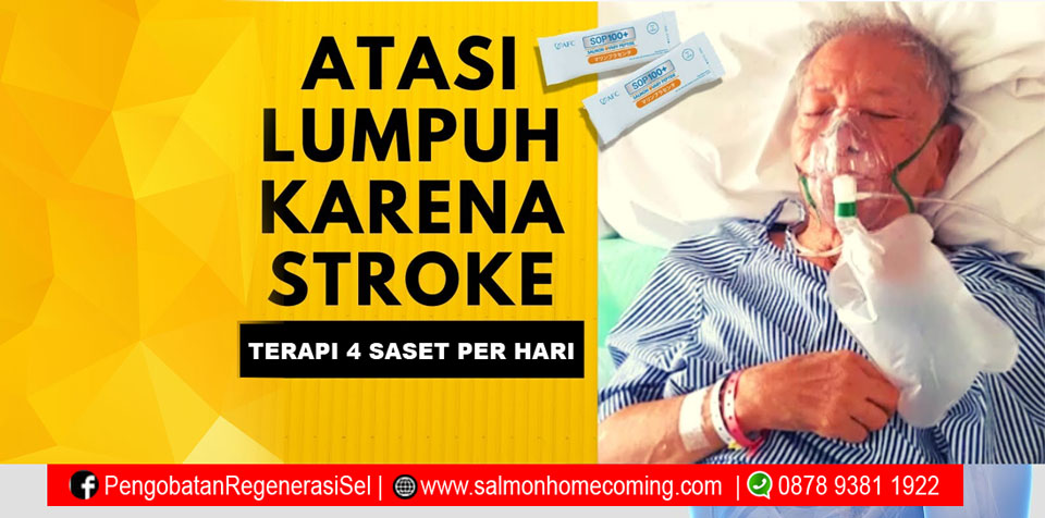 sembuh dari stroke batang otak
