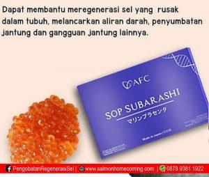 SOP Subarashi untuk Apa