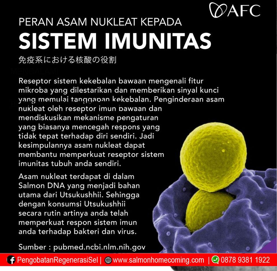 Peran Asam Nukleat Kepada Sistem Imunitas