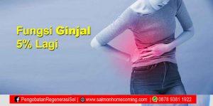 pengobatan ginjal kronis stadium 5